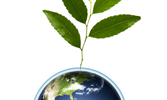 The Prophet's Approach to Environmentalism