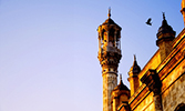 An Election in Medina