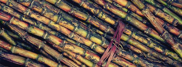 Prophetic Medicine: Sugar