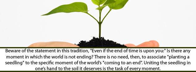 On 'Planting a Seedling' - Senai Demirci - Muhammad (pbuh) - Prophet